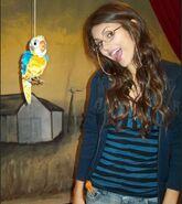 The Bird Scene