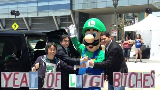 File:Year of Luigi.jpg