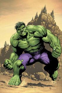 Hulky