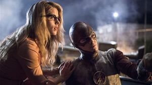 The Flash Fan Brain - Going Rogue