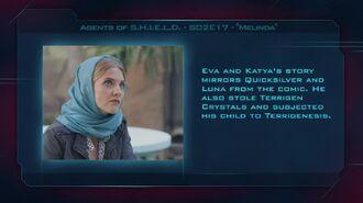 "Agents of S.H.I.E.L.D. S02E17 ""Melinda"" - Fan Brain"