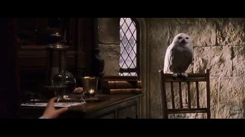 Harry Potter and the Sorcerer's Stone - Christmas morning in Hogwarts