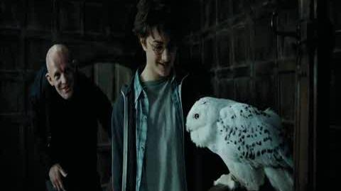 Harry Potter and the Prisoner of Azkaban - The Leaky Cauldron