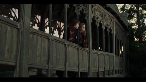 Harry Potter and the Goblet of Fire - Cedric's tip