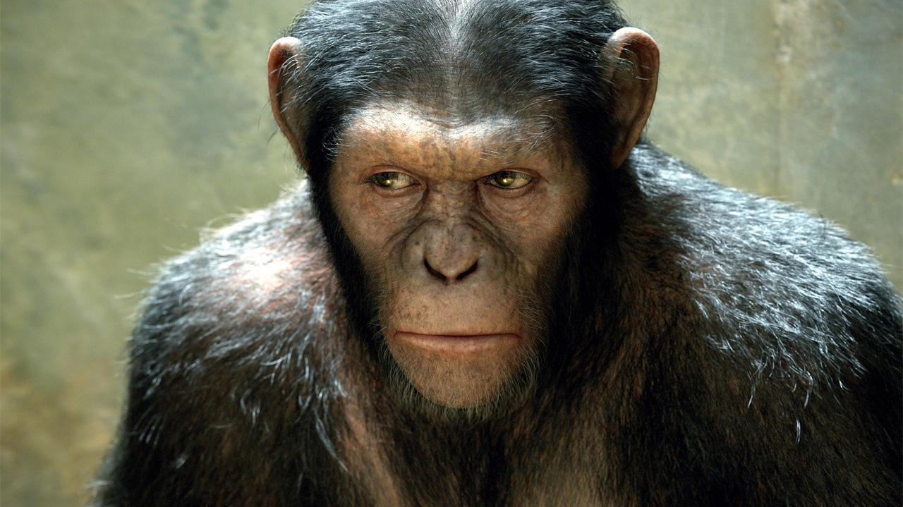 Rise of the Planet of the Apes Creating the Ape Escape