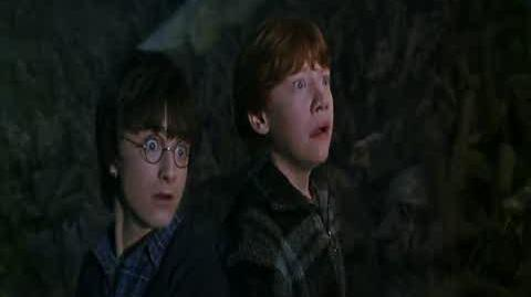 Harry Potter and the Chamber of Secrets - Fighting Spiders