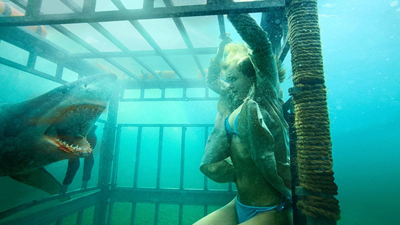 Shark Night 3D Teaser Trailer