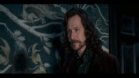 Harry Potter and the Order of the Phoenix - Harry confides in Sirius