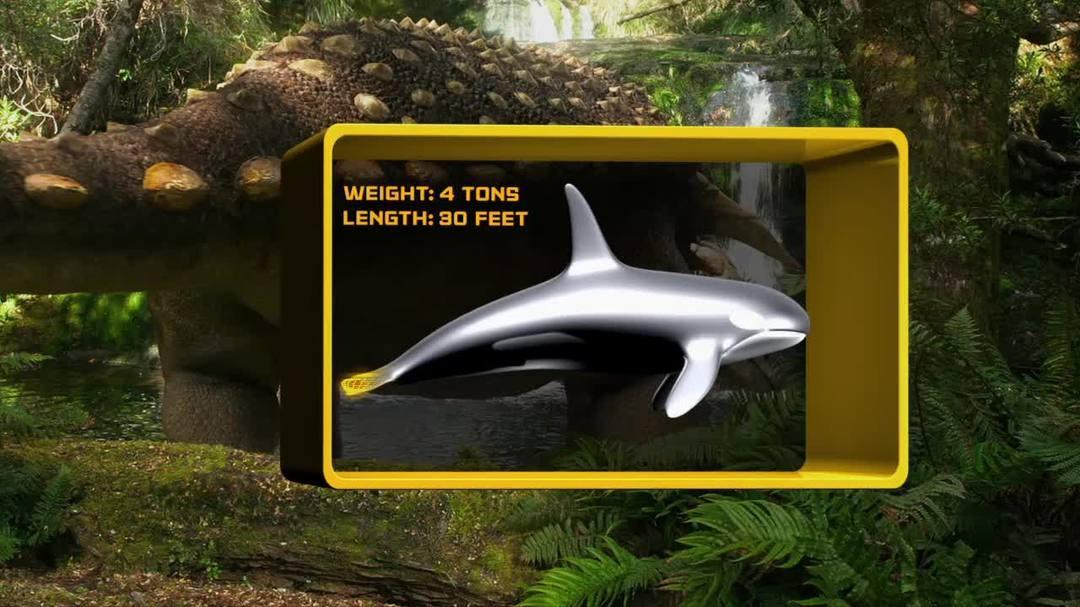 Walking With Dinosaurs - Dino Files Armored Ankylosaurs