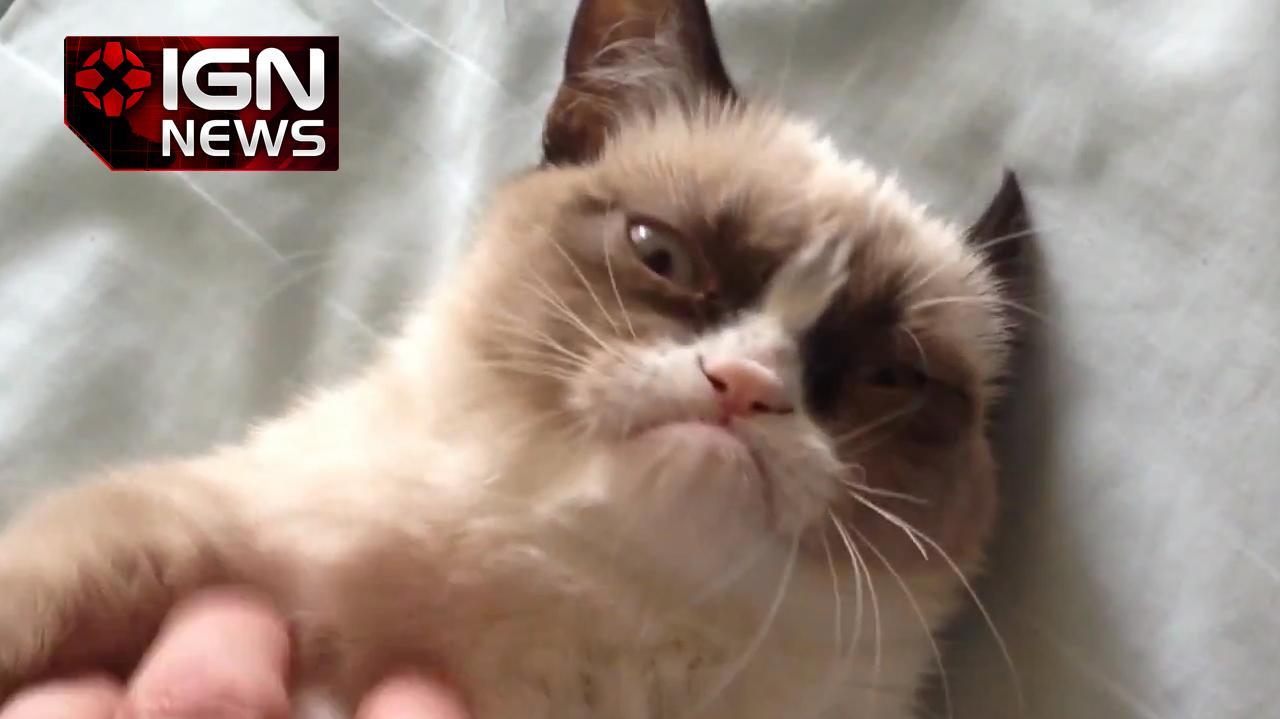 Grumpy Cat Lands Movie Deal