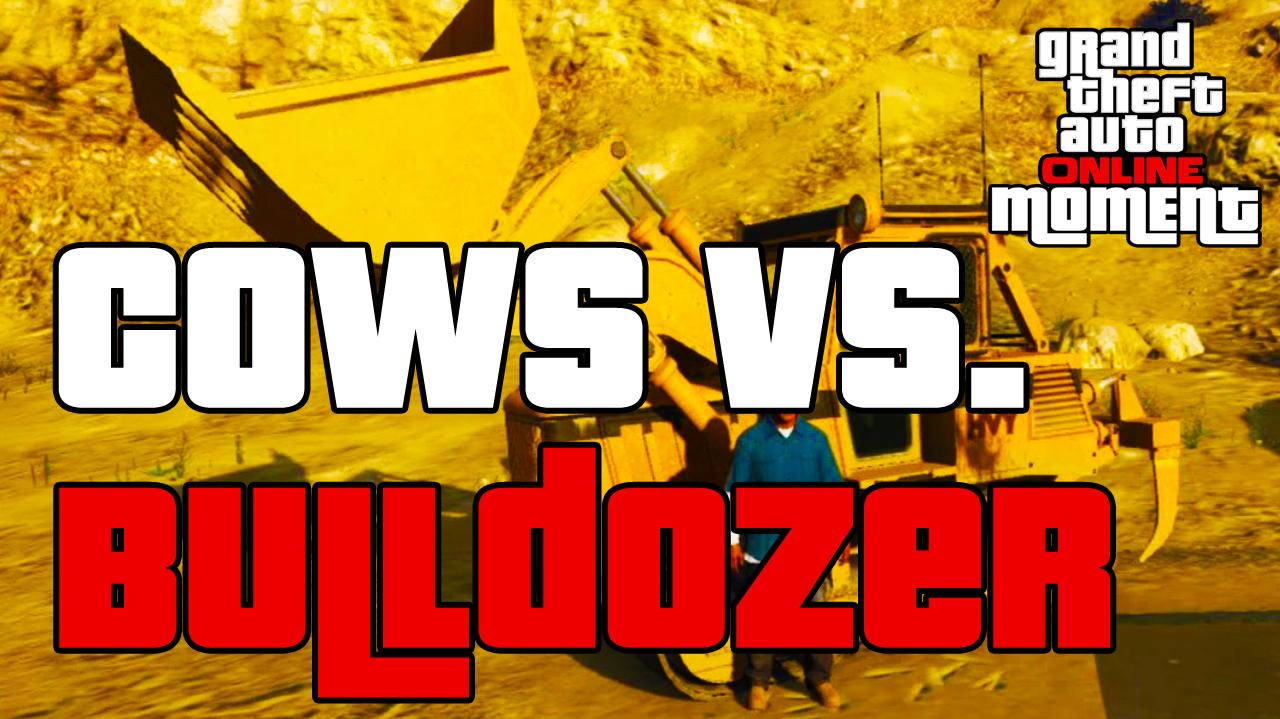 GTA Online - Cows Vs. Bulldozer