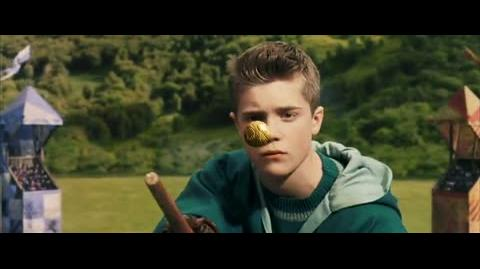 Harry Potter and the Sorcerer's Stone - First Quidditch match