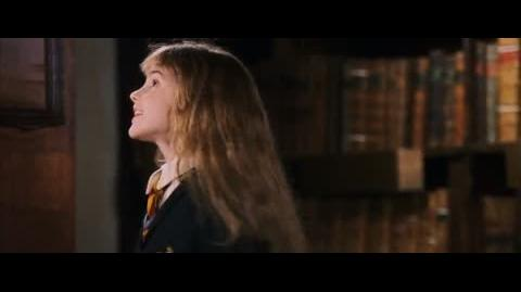 Harry Potter and the Sorcerer's Stone - Nicolas Flamel
