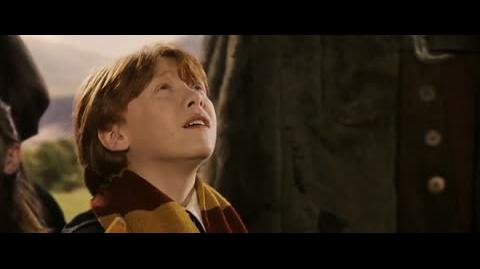 Harry Potter and the Sorcerer's Stone - The jinxed broomstick