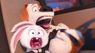 The Secret Life Of Pets (International Trailer 7)