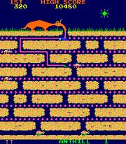 Anteater arcade
