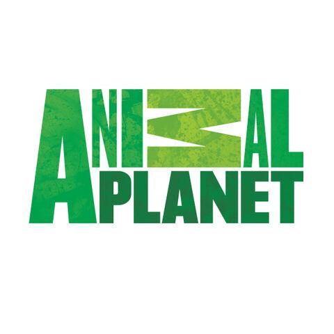 File:Animal Planet Logo 2.jpg