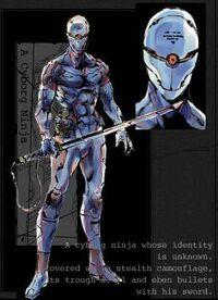 Gray Fox Ninja.jpg
