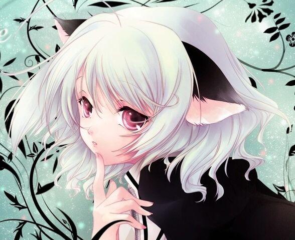 File:Neko-girl-anime-super-fan-24277284-671-547.jpg