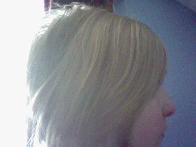 File:Hair 002.jpg