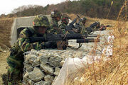 ROK marines with K2 rifles DM-SD-03-14422