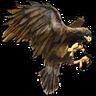 Hawk Familiar.png
