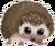 Hedgehog symbol