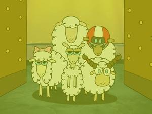 DCFDTL as the Sheeps