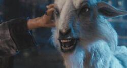 Lamia-Possessed Goat
