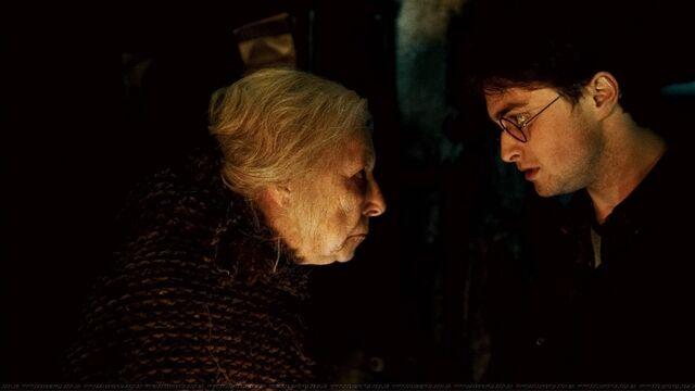 File:Harry & Bathilda.jpg