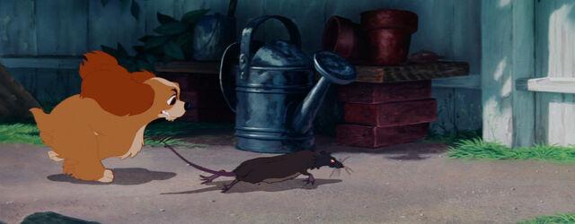File:Lady-tramp-disneyscreencaps com-821.jpg