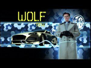 Wolf TFK
