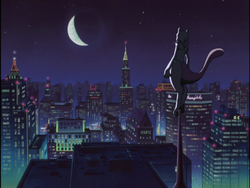Mewtwo in the City