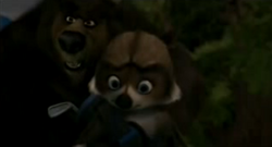 Over the Hedge Vincent with RJ