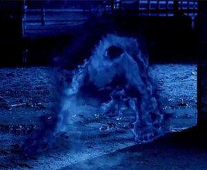 The Hellhound (Supernatural)