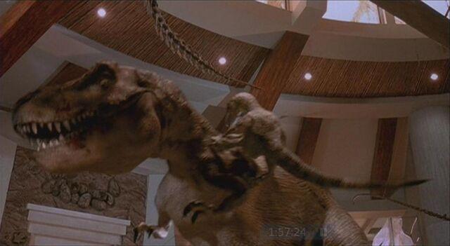 File:Velociraptor 10.JPG