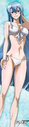 Esdeath Bikini
