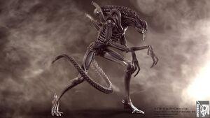 Aliens warrior cg shot iii by locusta-d47fw4y