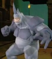 Rhino SMFF
