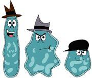 The amoeba boys by percyfan94-d57shub