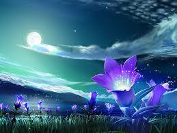 File:Purpleflowers.jpg