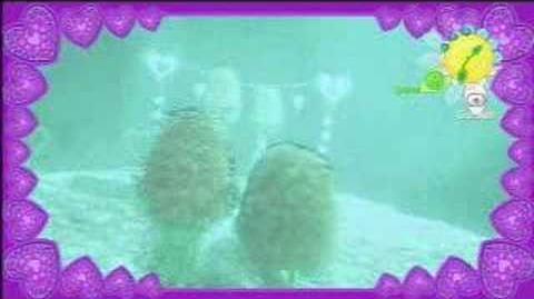 Twingersnap Romance Video