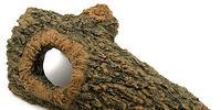 Reptile Bark Bend