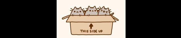 File:Kitties cub.jpg