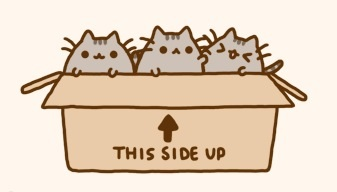 File:Kitties small.jpg