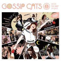 Gossip cats - album illust
