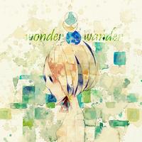 Wonderwander