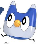 Kou-chan pet