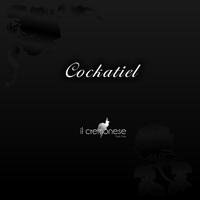 Cockatiel album