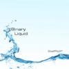 Binary Liquid album